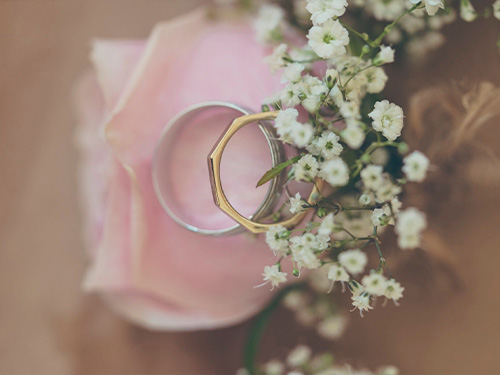 Wedding rings on flower.
