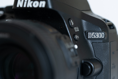 Nikon D5300 basic camera for event photography.