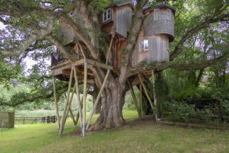 treehouse-north-devon_01